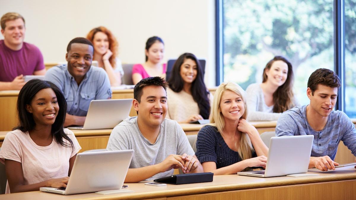 Universités : les différentes licences proposées