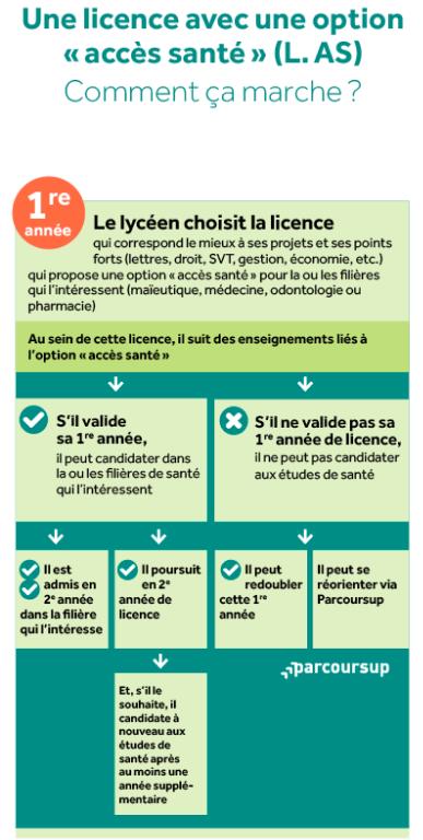 Parcours licence avec option santé
