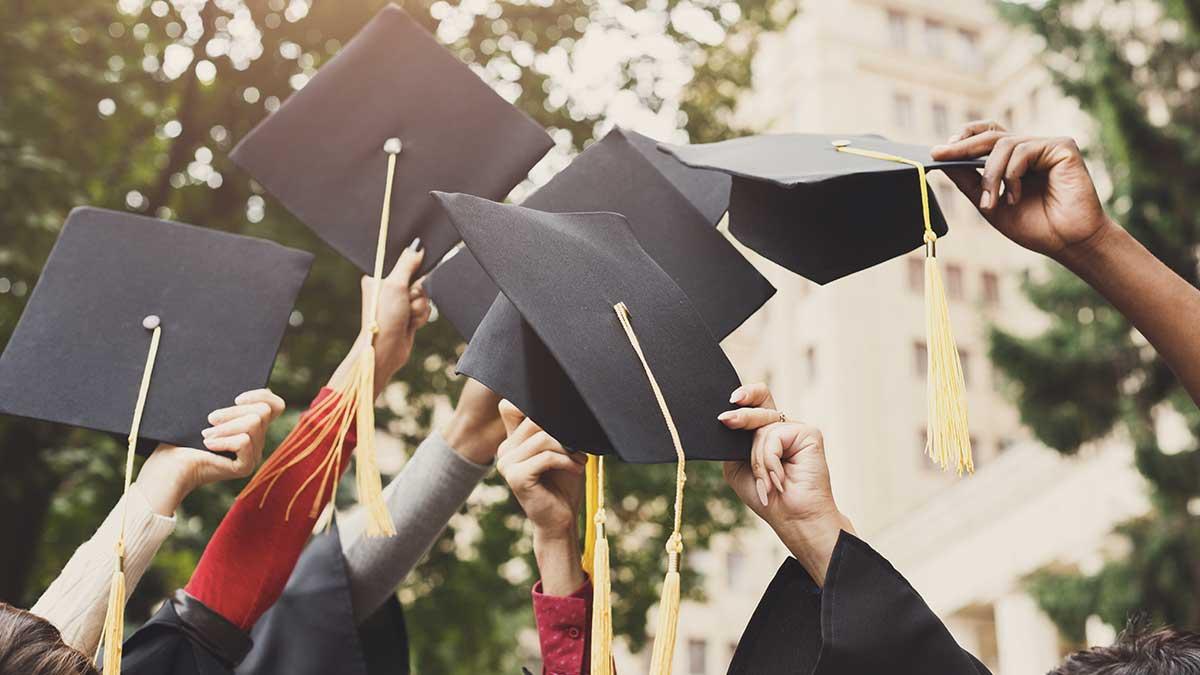 Quelle est la différence entre une licence et un bachelor ?