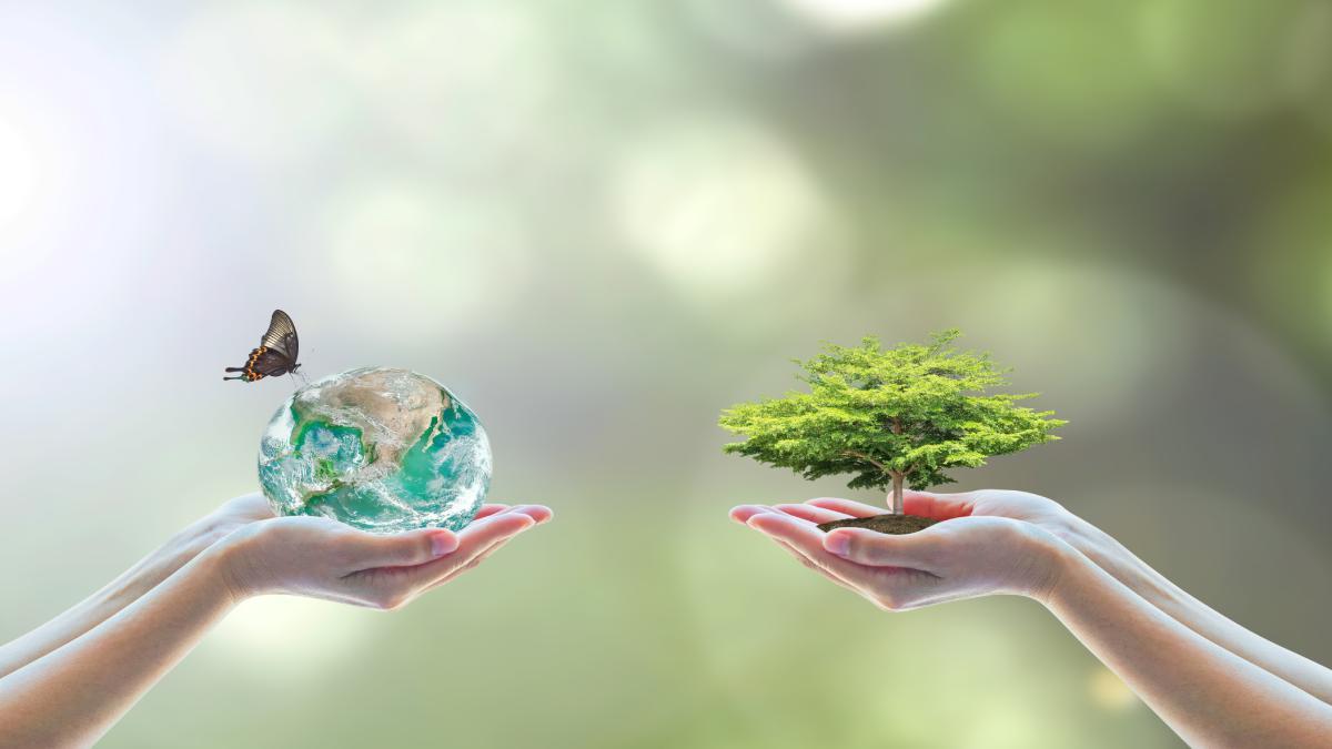 Protection de la planète